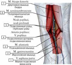 Боли в коленном суставе сзади лечение 26